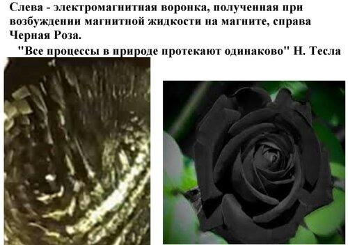 Новые картинки в мироздании 0_994d1_49a3ed4a_L