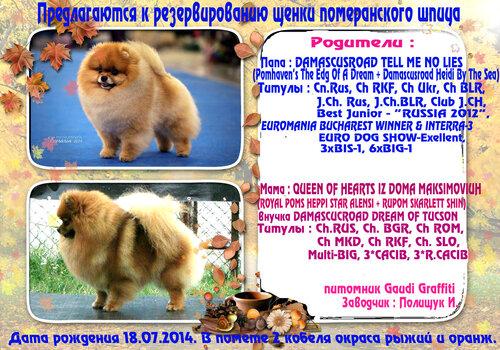 http://img-fotki.yandex.ru/get/6802/37228632.a/0_8d3e6_25179abd_L.jpg