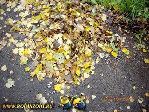 листья для мульчи