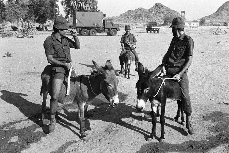 """Lors de l'opération """"Manta"""", des militaires français font une promenade à dos d'âne à Biltine."""
