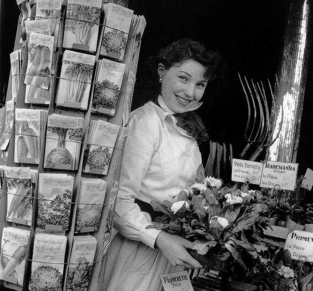 1950. Цветочница