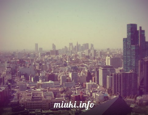 На смотровой площадке токийской башни
