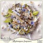 Hydrangeas Fragrance.jpg