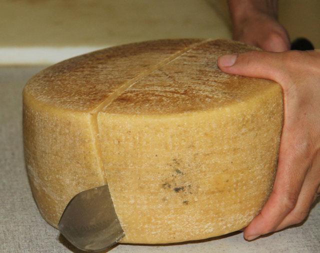 Как сделать сыр пекорино