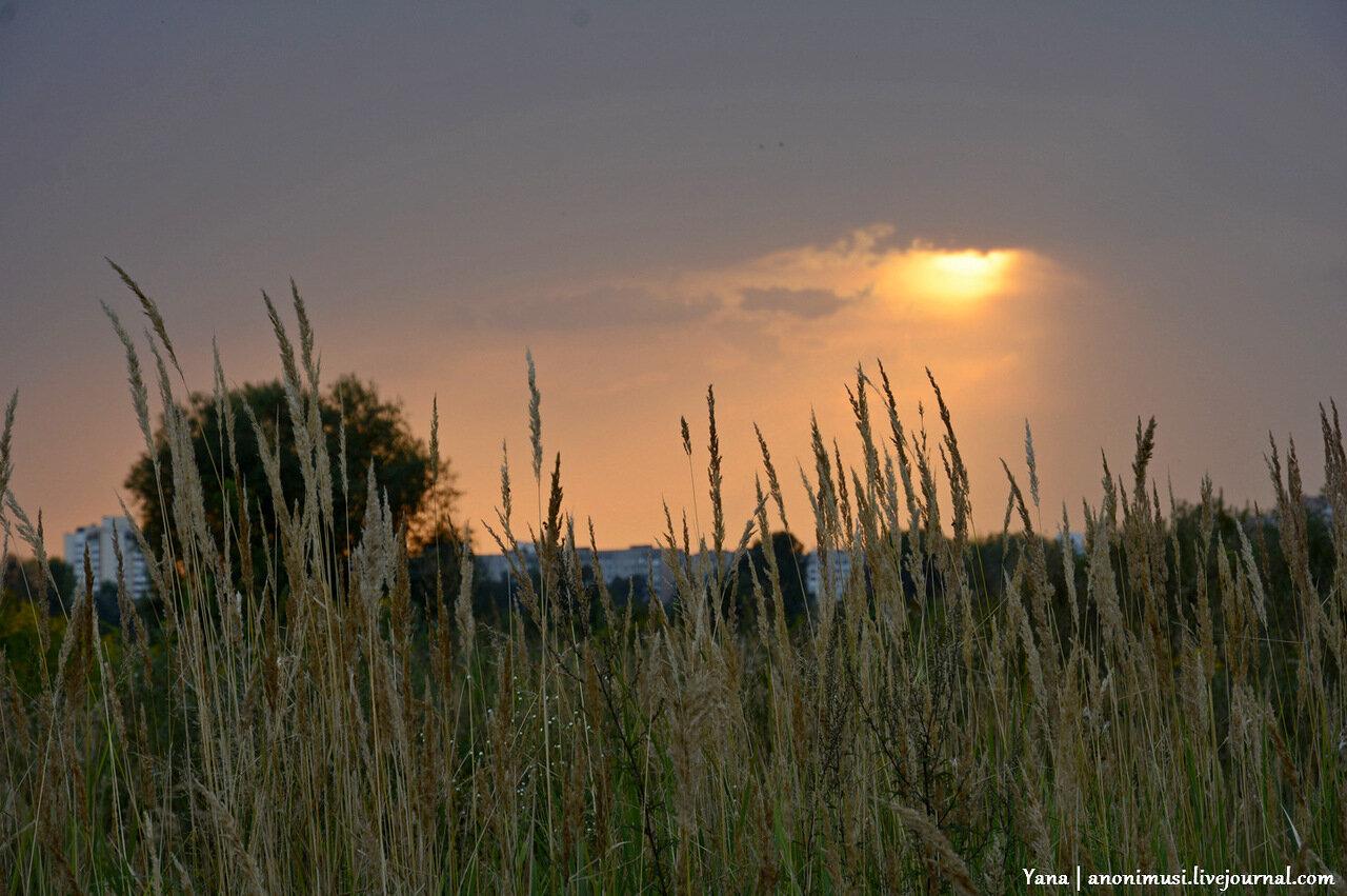 Закат над Гомелем. Шведская горка