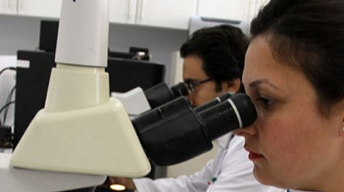В России будут лечить рак с помощью стволовых клеток