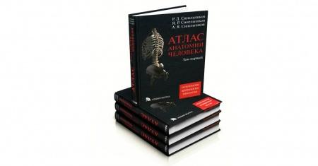 Книга «Атлас анатомии человека» Рафаила Синельникова — классика жанра. Полное и самое свежее издание. #медицина #анатомия #биология
