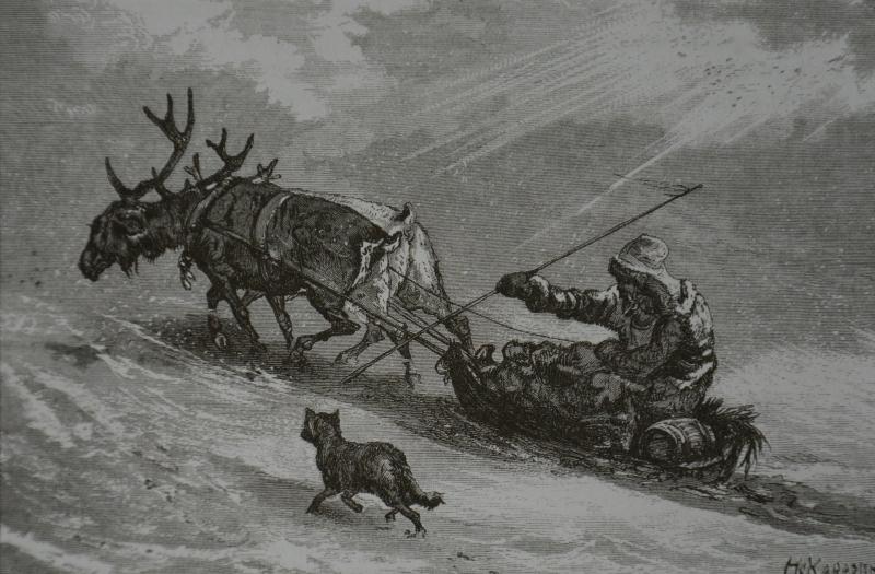 езда на оленях.jpg