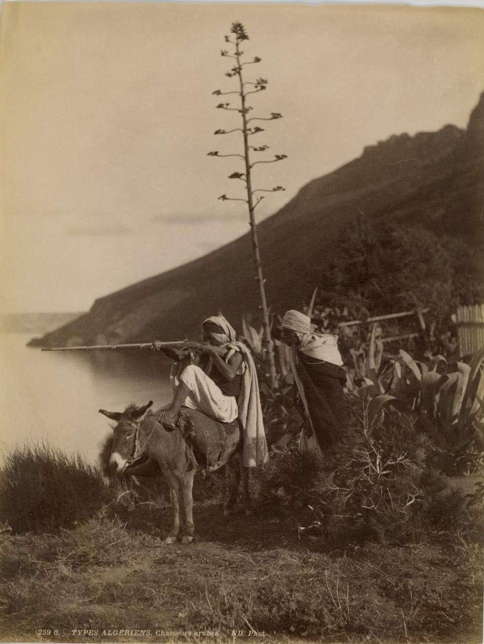 1880. Типы алжирцев. Арабские охотники