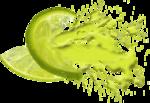 Lemony-freshness_elmt (36)b.png
