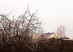 Странная зима 2014