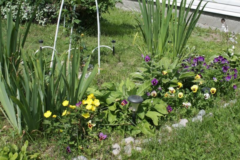 Фотоальбом «Лучшее из сада»