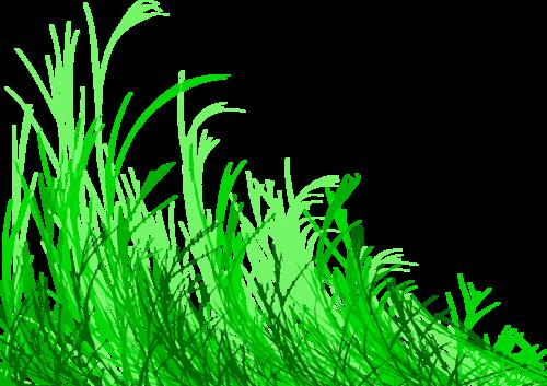 Кустики травы