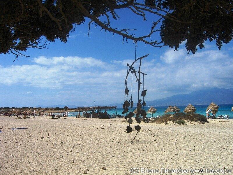 Остров Криси