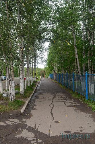 Фотография Инты №7161  Западная сторона Чайковского 8 24.08.2014_12:52