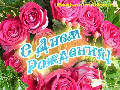 Открытка на День Рождения - Розовые розы