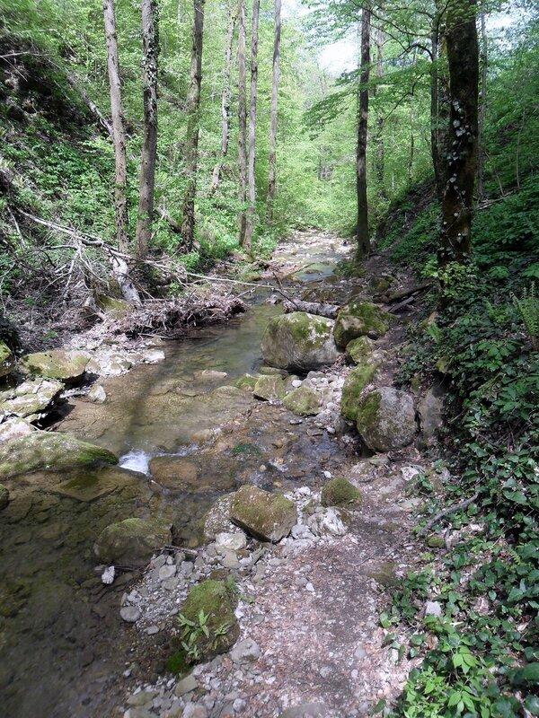 Весной, у реки