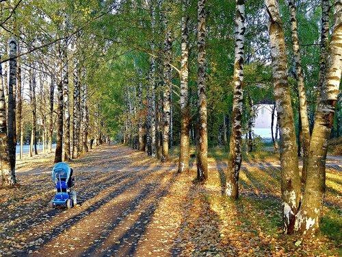 Осенний солнечный денек..