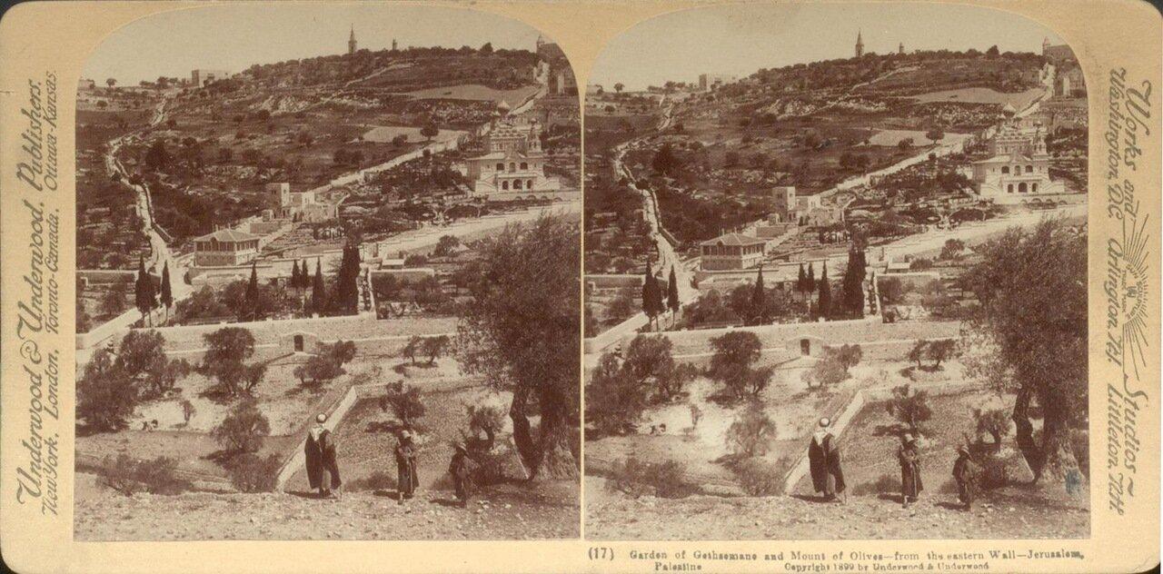 Иерусалим. Гефсиманский сад и Масляничная гора. 1899
