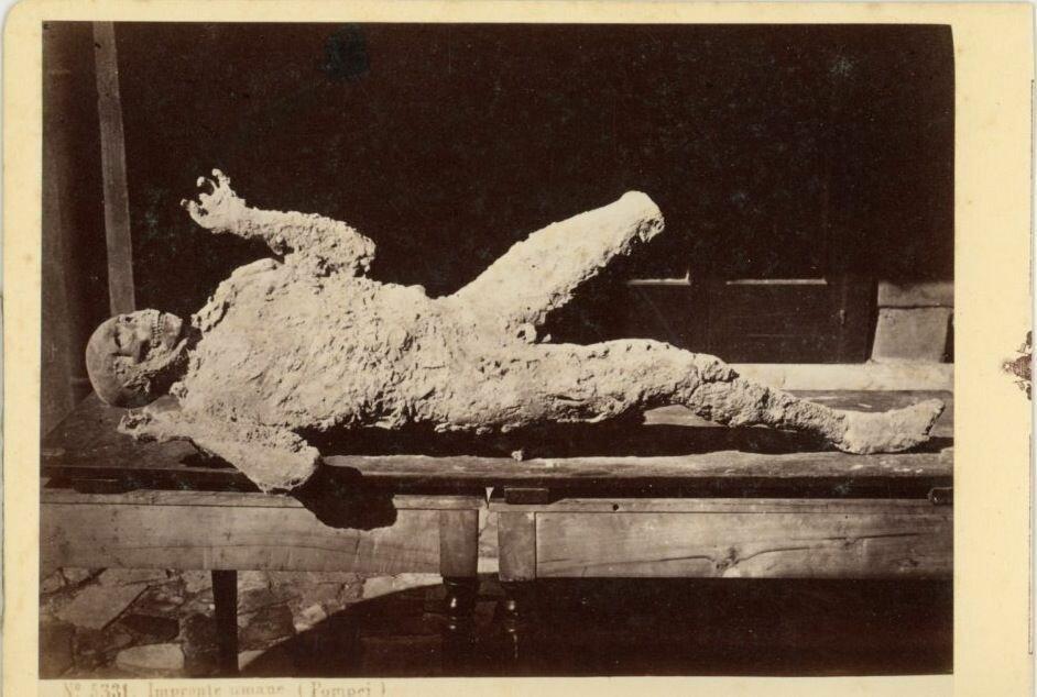 1880. Останки обитателя Помпей