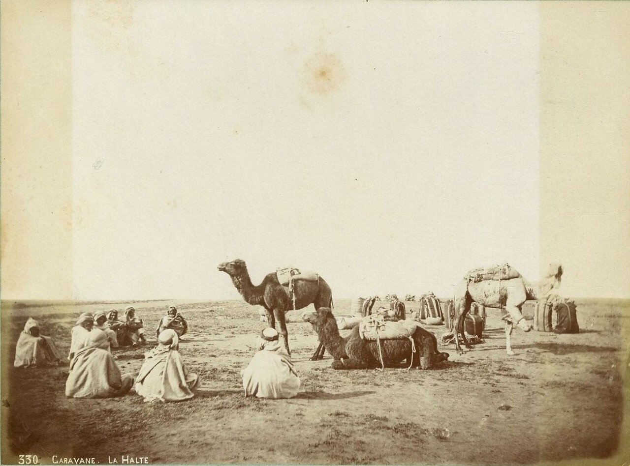1875. Караван.