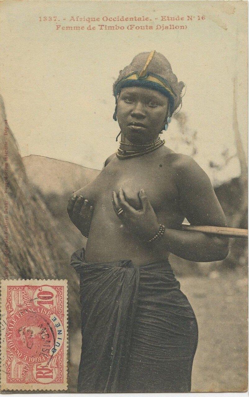 1337. Женщина народа Тимбо