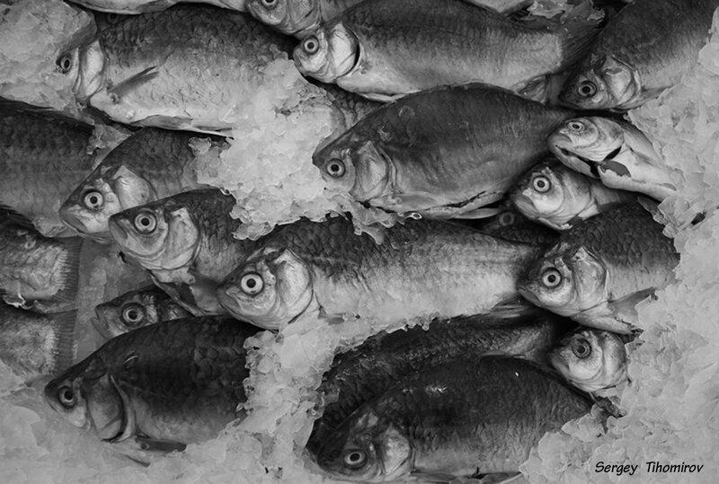 Рыбный.