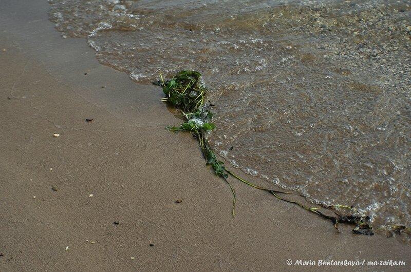 Пляжный фестиваль 'Энергия', Саратов, солярий Затон, 24 февраля 2014 года