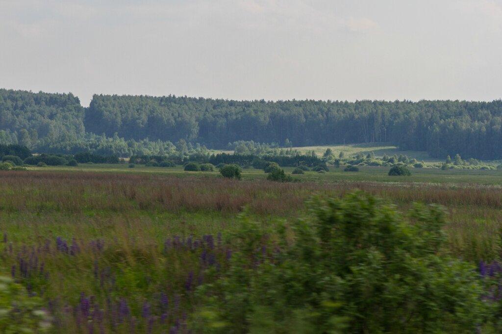 Пейзаж вдоль автодороги 17А-2