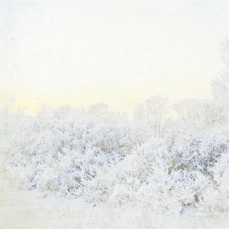 mzimm_snowflurries_pp4.jpg