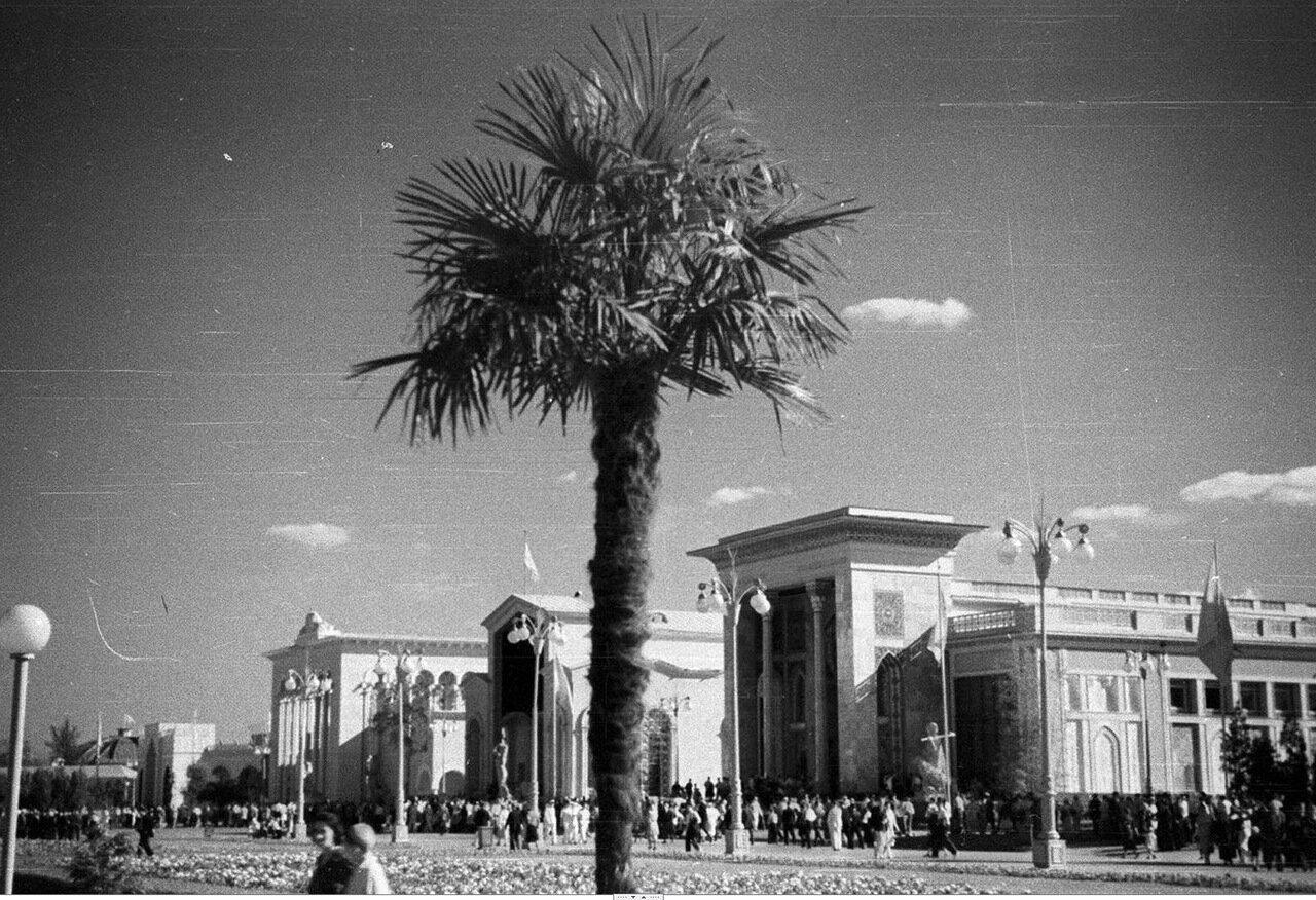 98. Юго-западная сторона Площади колхозов. Павильоны Казахской, Грузинской, Армянской и Азербайджанской ССР