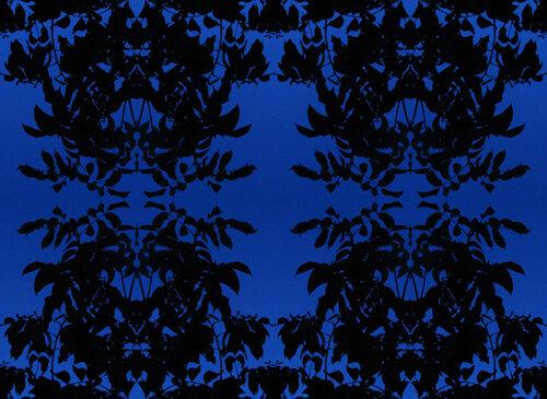 синяя синяя шаль.jpg