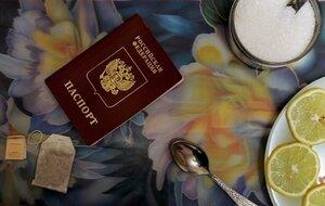 В России запретили сокрытие факта наличия второго гражданства