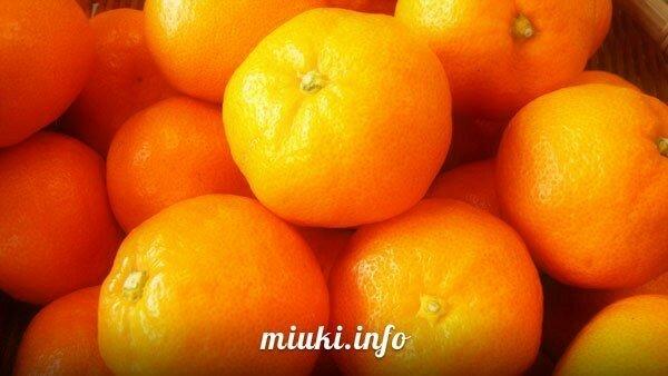 Фрукты Японии Mikan мандарин