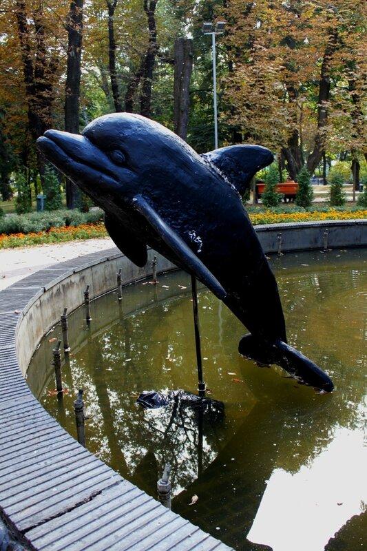 Дельфин в чаше фонтана