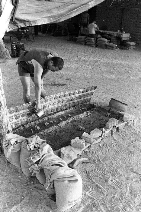 """Lors de l'opération """"Manta"""", un petit jardin dans le camp des militaires français à Biltine."""