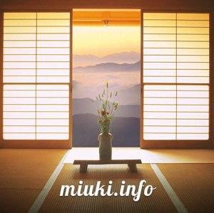 Японские шторы в современном интерьере