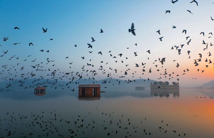 10 прекрасных фотографий конкурса National Geographic 2015 года 0 12f890 8f181f10 orig