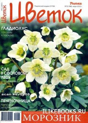 Цветок №5 2012