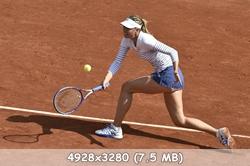 http://img-fotki.yandex.ru/get/6807/318024770.8/0_131993_8d08e028_orig.jpg