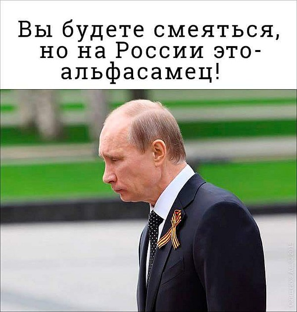 Европа не может позволить, чтобы Россия переписала наши принципы, - Меркель - Цензор.НЕТ 9776