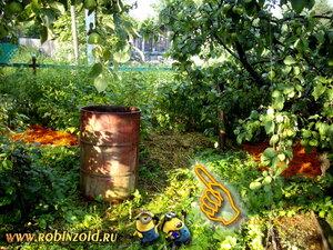 будущий компост