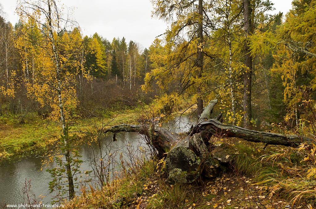 Фото 14. Оленьи ручьи. Отчет о походе. На берегу очень дикой реки...
