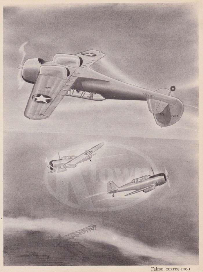Curtiss SNC-1 Falcon - учебно-тренировочные самолеты