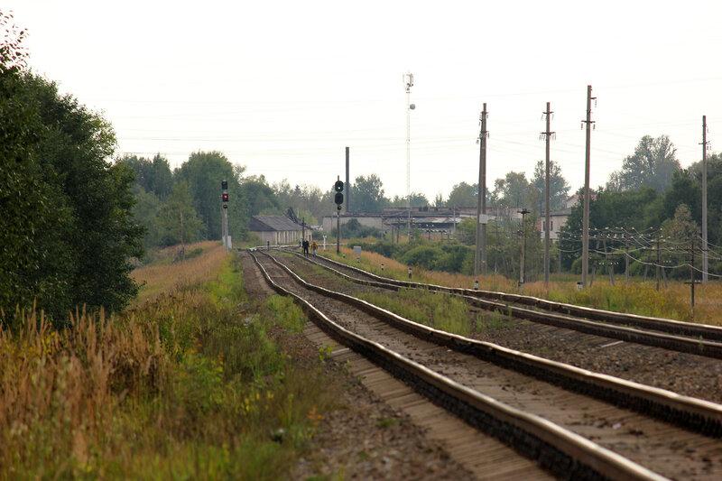 Северные входные по станции Плюсса