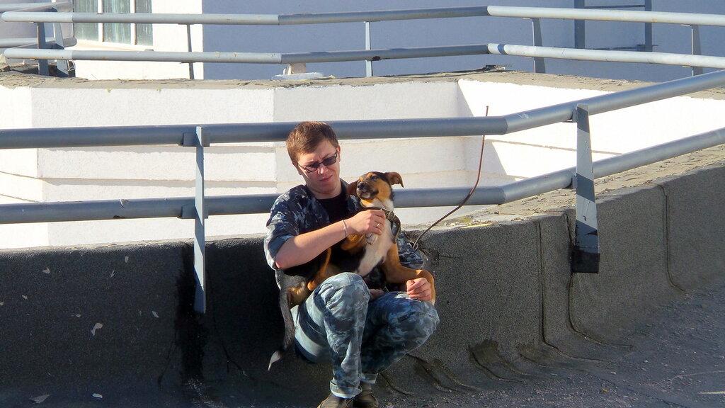 Макс высотный пёс2.jpg