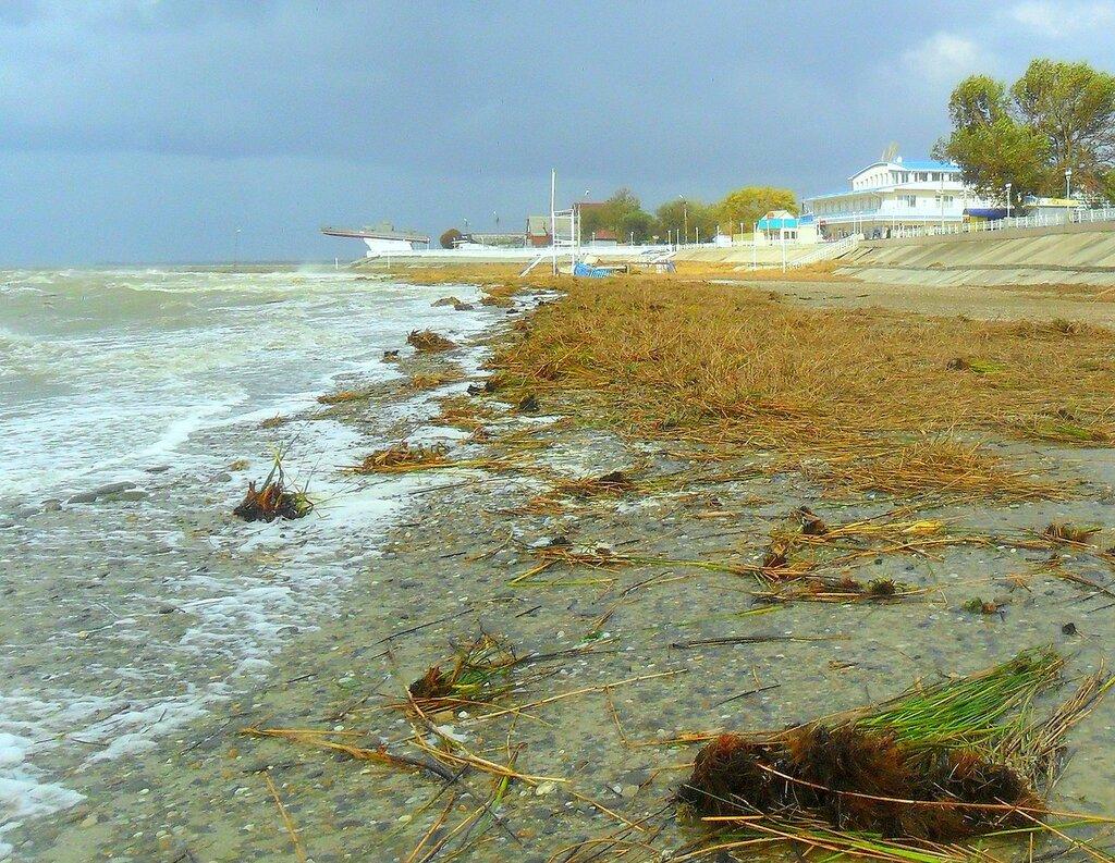 Сентябрь, Азовское побережье, осенние картинки