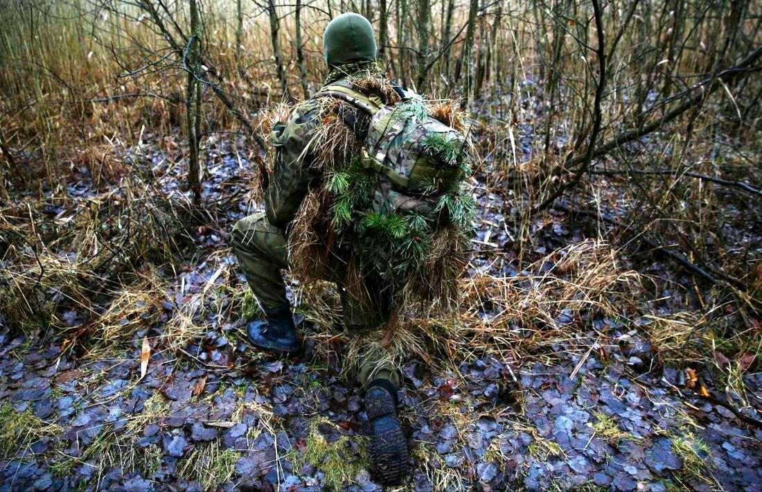 Военизация по-польски: Назло Европе и в угоду Америке (24)