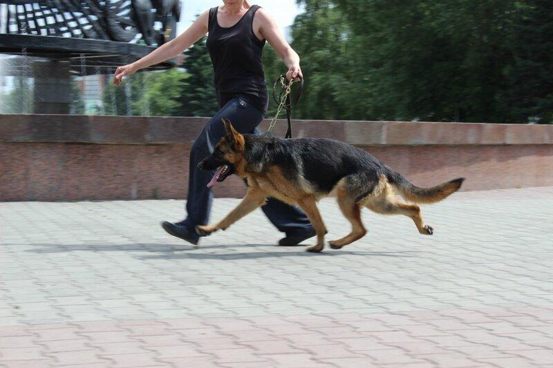 http://img-fotki.yandex.ru/get/6809/134559744.21/0_cbbd8_8951a44c_XL.jpg