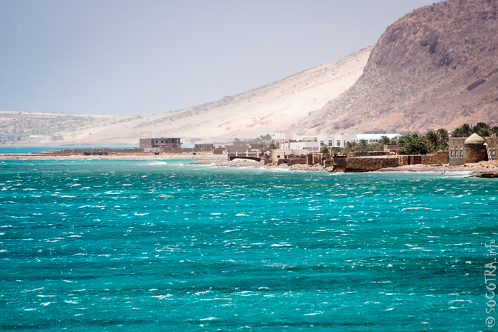 Фотографии острова Сокотра